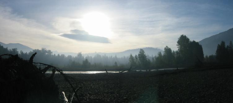 Field site (pic M. Rillig)