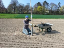 Soil ninja (pic M. Rillig)